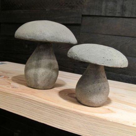 funghi-cemento